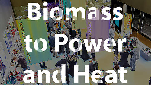 Biomass to Power and Heat